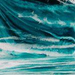 High Seas Protection Webinar – EarthX Conference 2020